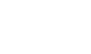 Automotive Interior Exclusives AIE logo